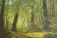 Forestpath-scaled