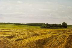 Wheatfield-scaled