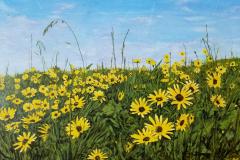 Yellowdaises-scaled